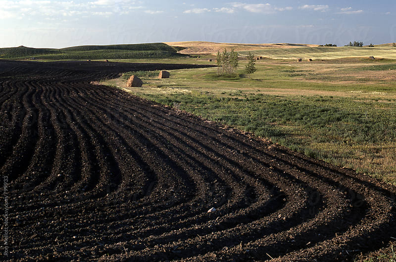 Plowed fields and hay bales, North Dakota by Ron Mellott for Stocksy United