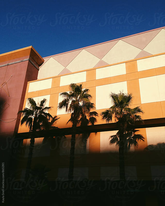Palm trees lined up against a colorful building by Kayla Snell for Stocksy United