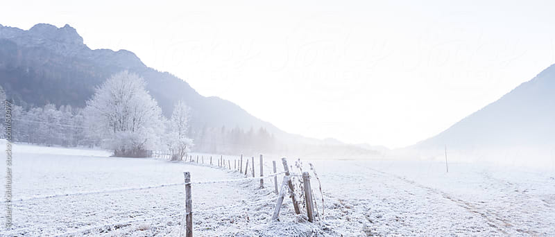 Frozen winter landscape by Robert Kohlhuber for Stocksy United