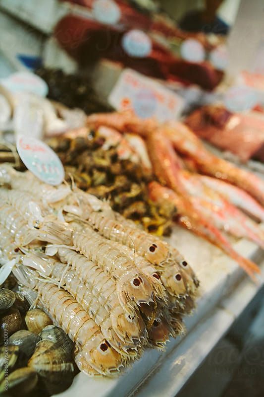 Mantis shrimps for sale in a fish market by kkgas for Stocksy United