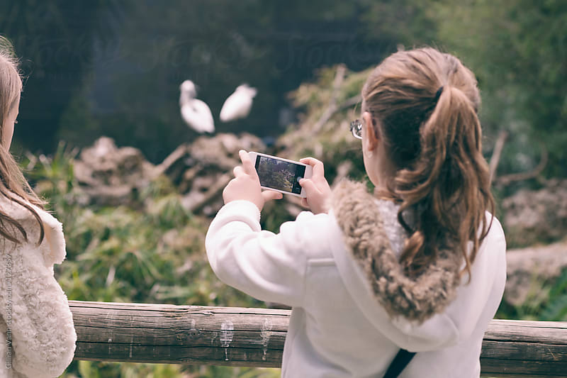 shooting animals at the zoo by Gillian Vann for Stocksy United