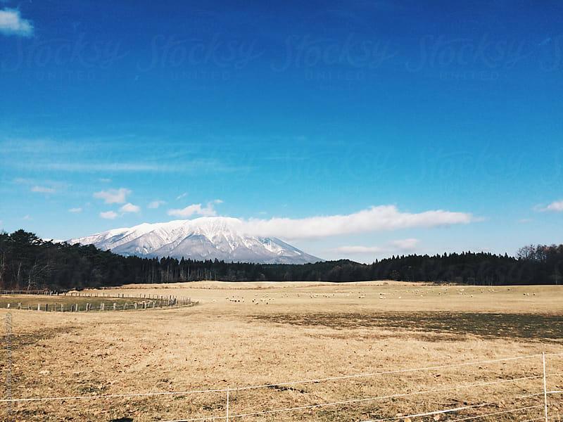Iwate mountain by jira Saki for Stocksy United