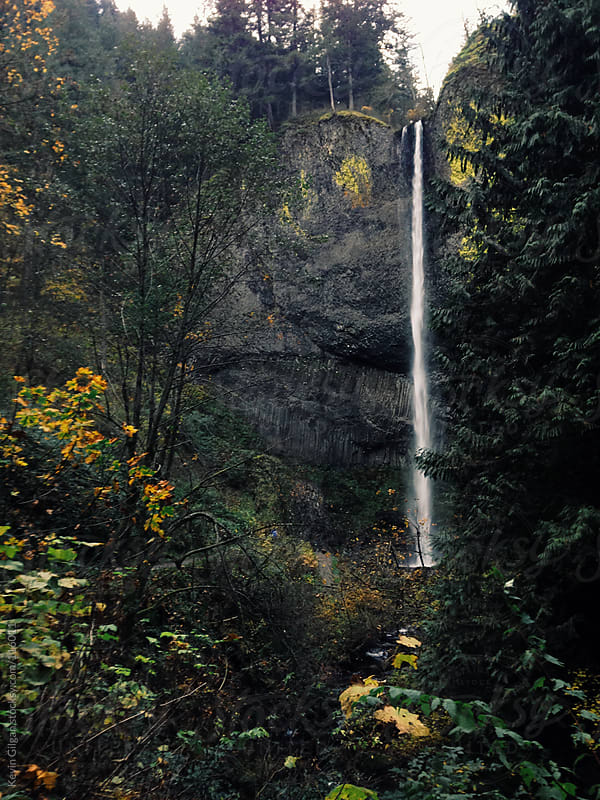 Latourell Falls, OR by Kevin Gilgan for Stocksy United