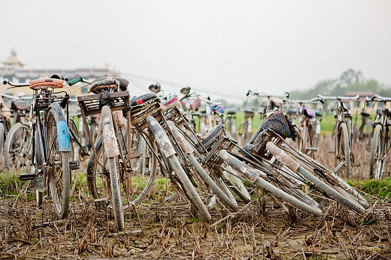Row of Bicycles by Christine Hewitt for Stocksy United