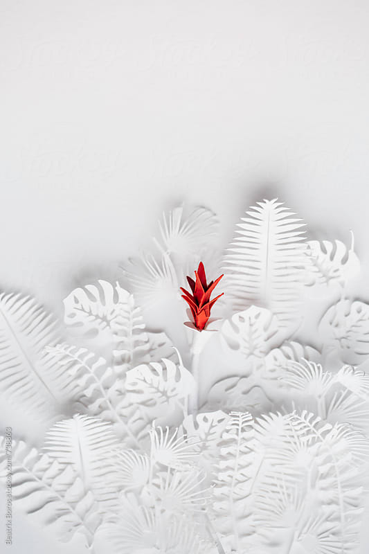 Conceptual idea of a red flower appearing in the middle of colorless white plants by Beatrix Boros for Stocksy United