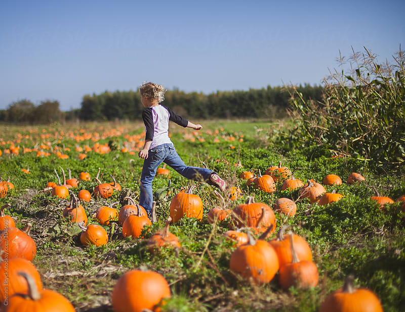 A young girl leaps through the pumpkin patch. by Cherish Bryck for Stocksy United
