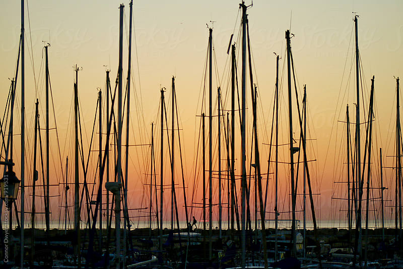 Sunset & Sailboats by Connor Dwyer for Stocksy United