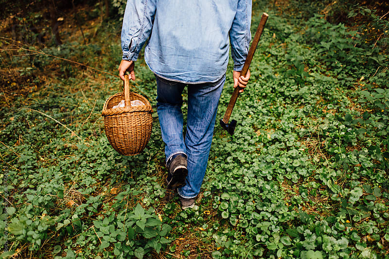 Lumberjack walking down the forest with basket Lunch by Boris Jovanovic for Stocksy United