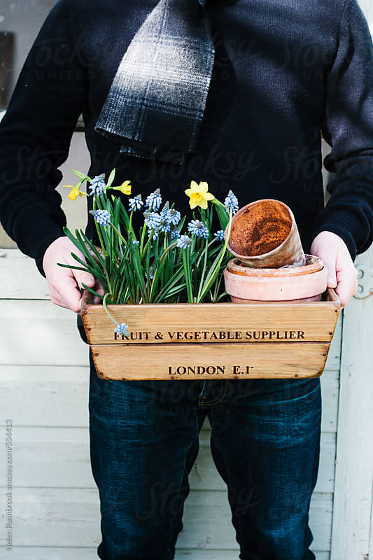 Man holding a vintage wooden crate containing flowering spring bulbs. by Helen Rushbrook for Stocksy United