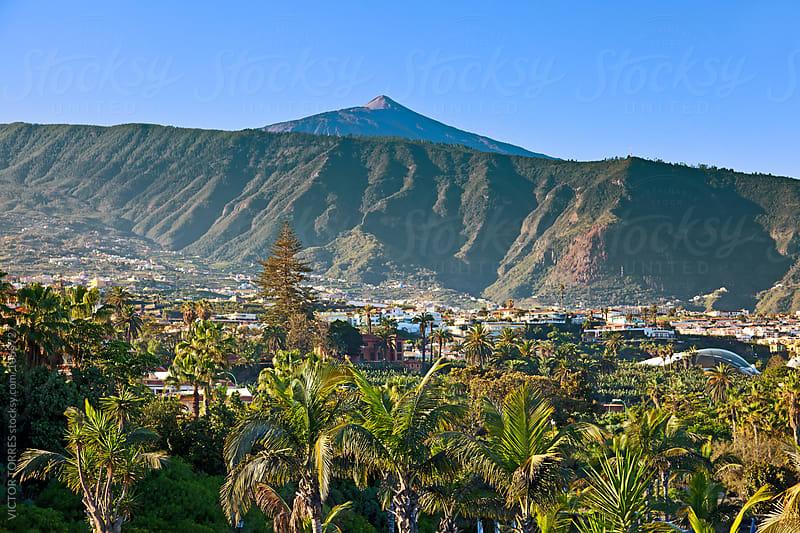 Teide Mountain Peak from Puerto de la Cruz by VICTOR TORRES for Stocksy United
