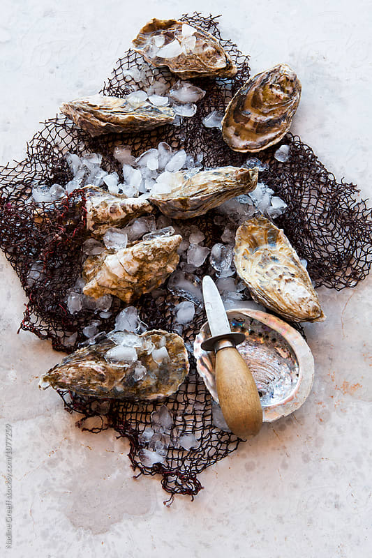 Fresh whole atlantic oysters by Nadine Greeff for Stocksy United