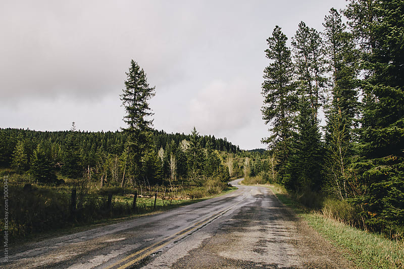 Rural country road. by Justin Mullet for Stocksy United