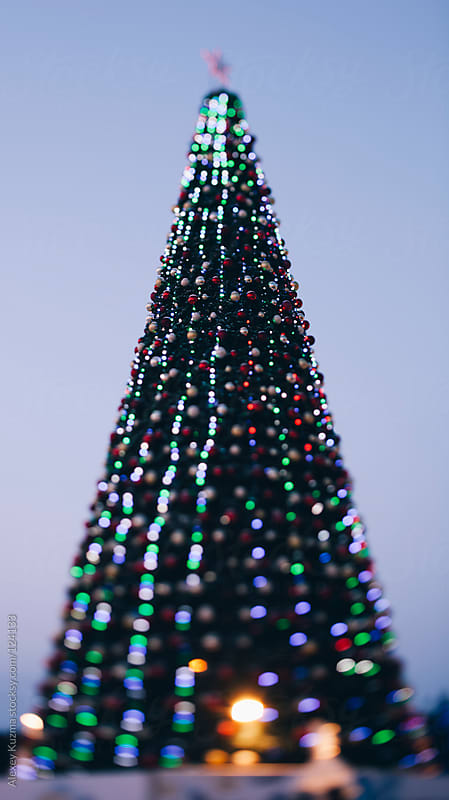 Christmas tree and lights by Alexey Kuzma for Stocksy United