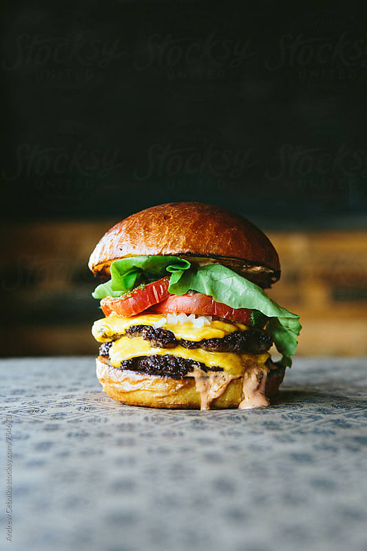 Cheeseburger - digital file by Andrew Cebulka for Stocksy United