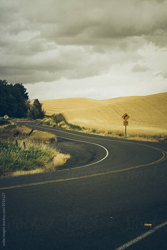 highway through wheat field in Palouse, WA by unite images for Stocksy United
