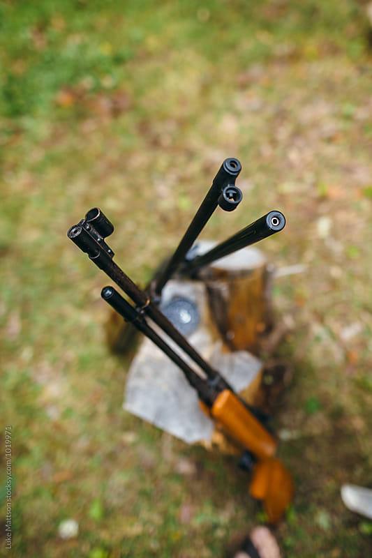 Pellet Gun Rifles Leaning Against Log by Luke Mattson for Stocksy United