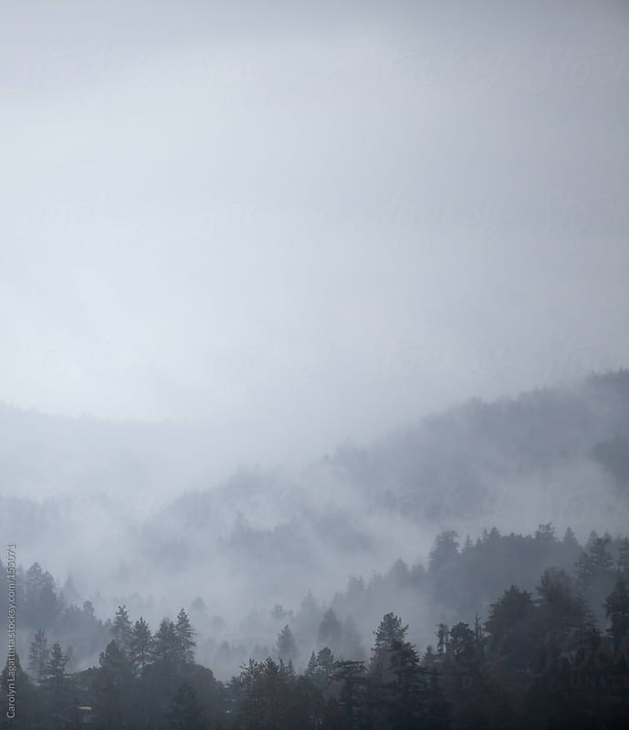 Fog nestled in the mountains on a dark, rainy day by Carolyn Lagattuta for Stocksy United