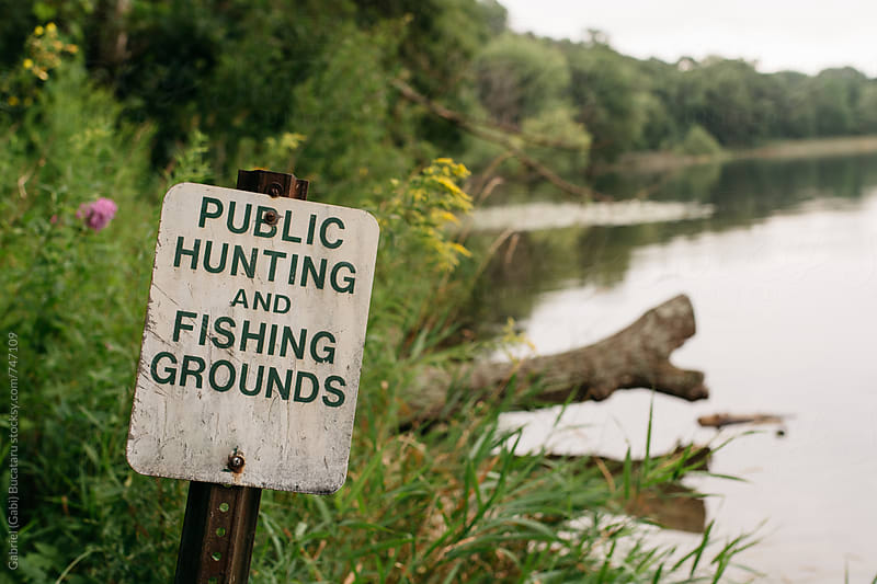 Hunting and fishing groungs public sign by a lake by Gabriel (Gabi) Bucataru for Stocksy United
