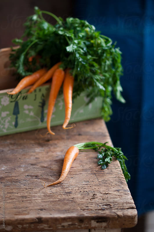 carrots by Laura Adani for Stocksy United