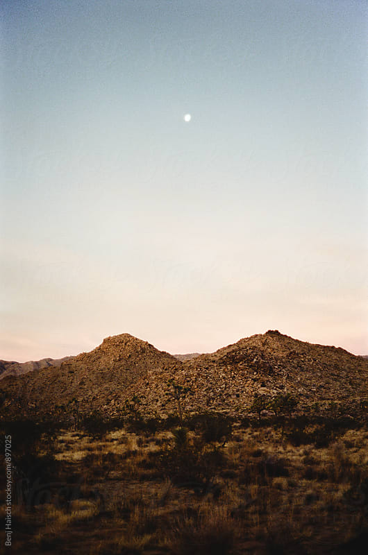 Moonrise Over Joshua Tree by Benj Haisch for Stocksy United