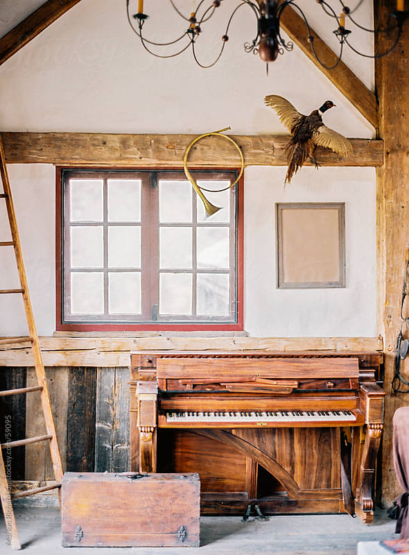 Vintage space with ladder, piano, horn, and bird by Marlon Richardson for Stocksy United