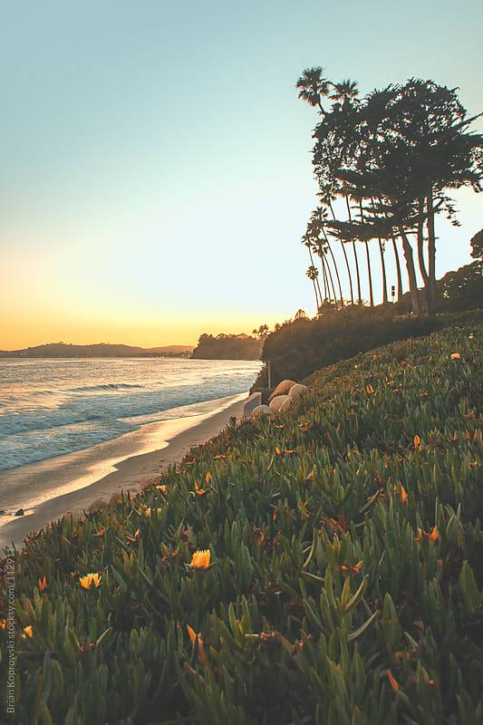 West Coast Livin' by Brian Koprowski for Stocksy United
