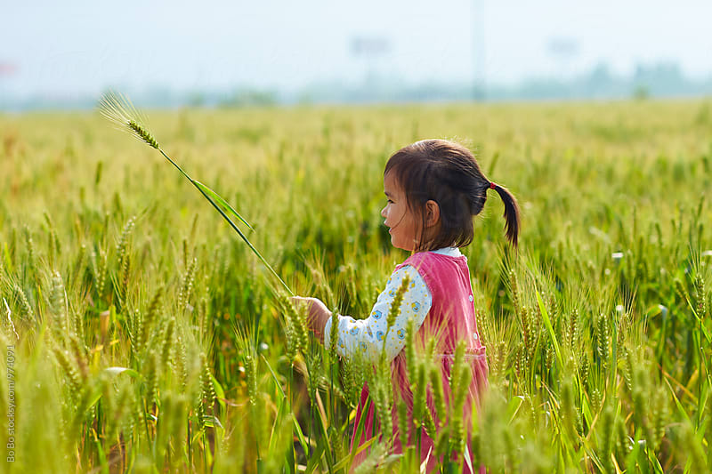 lovely little asian girl in wheat field by Bo Bo for Stocksy United