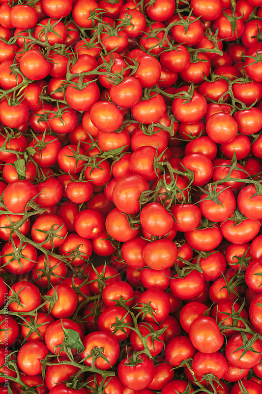 Red vibrant cherry tomatos  by Borislav Zhuykov for Stocksy United