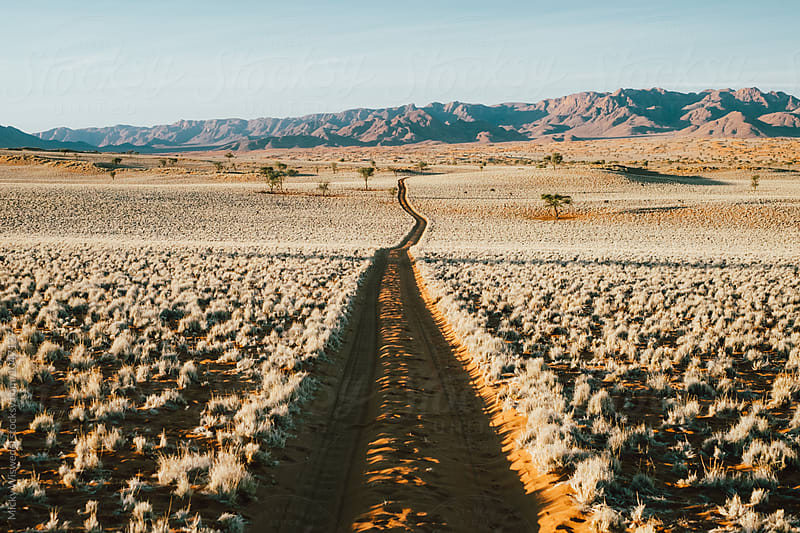 Long empty dirt track in a scenic desert landscape by Micky Wiswedel for Stocksy United