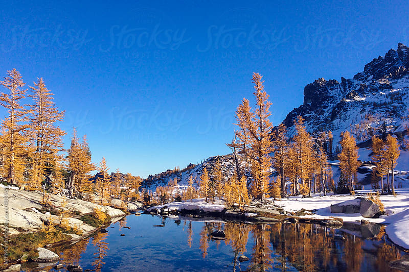 Snow in the Fall by Jeff Marsh for Stocksy United