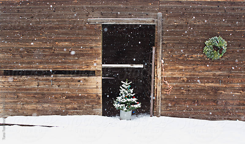 rustic barn decorated with tree and wreath for holidays by Tana Teel for Stocksy United