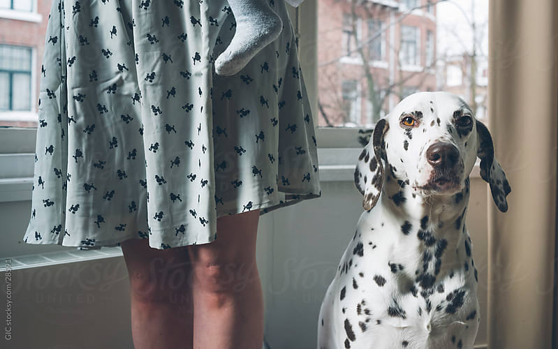 Dalmatian and pois clothes by GIC for Stocksy United
