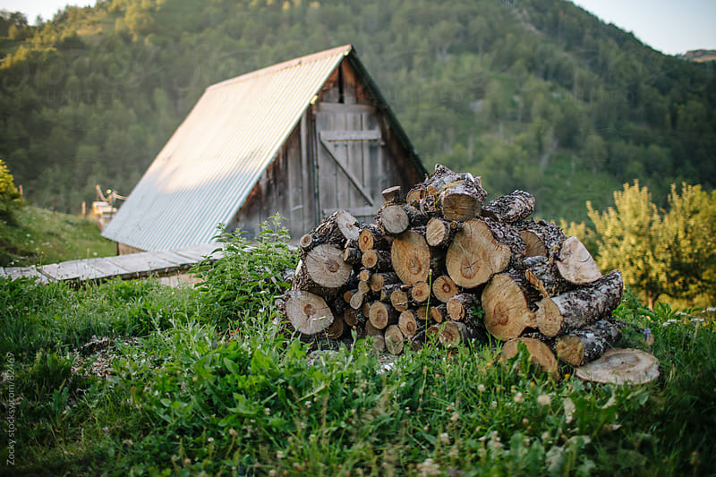 Woodpile in field by Zocky for Stocksy United