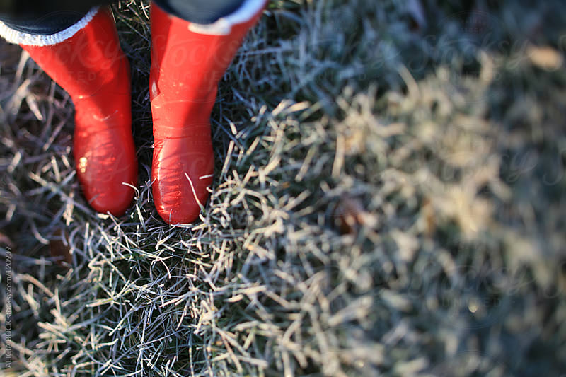Red Boots In Frosty Grass #2 by ALICIA BOCK for Stocksy United