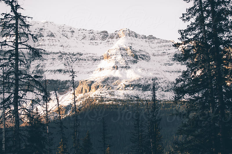Beautiful Mountain Light Near Jasper National Park by Jake Elko for Stocksy United