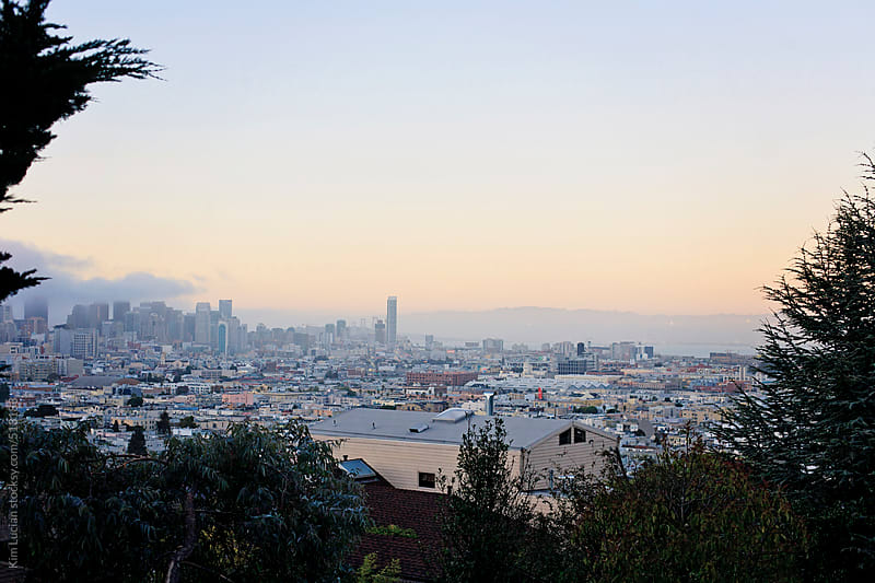 View of San Francisco at Sunset through Trees by Kim Lucian for Stocksy United