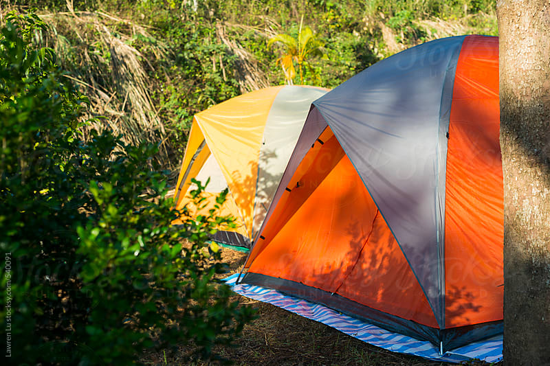 Orange and yellow tents building in forest by Lawren Lu for Stocksy United