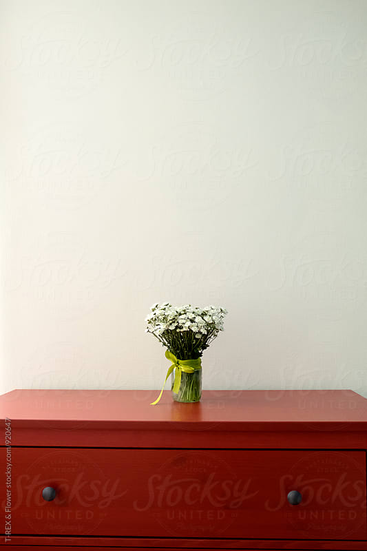 Beautiful white wildflowers on dresser by Danil Nevsky for Stocksy United
