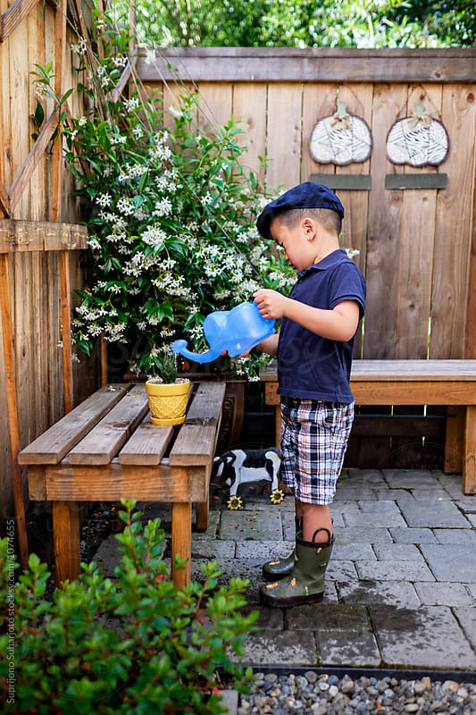 Asian kid watering a potted plant in the backyard by Suprijono Suharjoto for Stocksy United