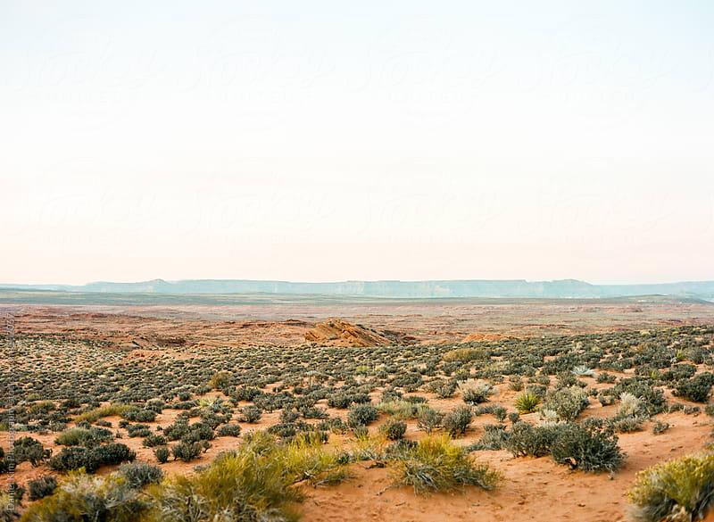 Arizona Landscape by Daniel Kim Photography for Stocksy United