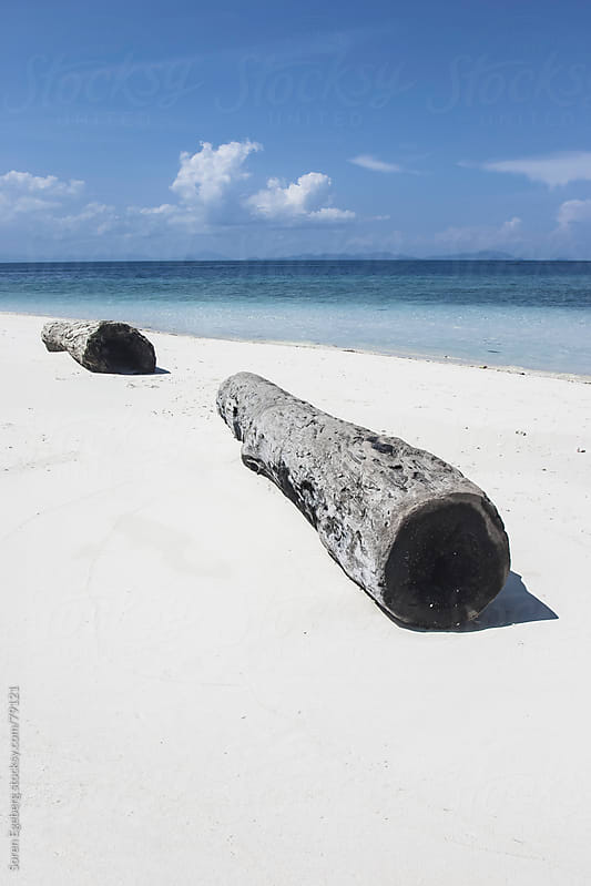Old drift wood logs on tropical island beach by Soren Egeberg for Stocksy United