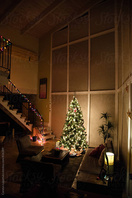 Lit up Christmas tree in a modern home with big windows by Carolyn Lagattuta for Stocksy United