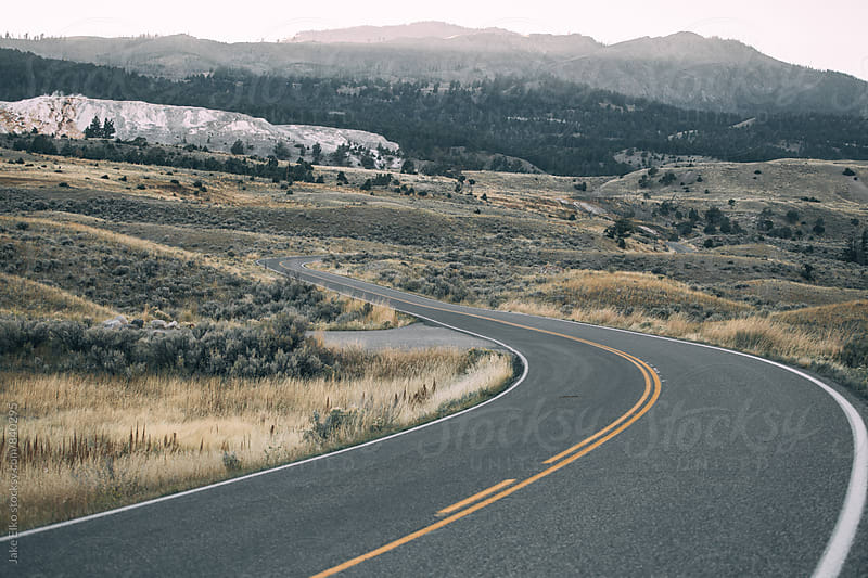Road in Yellowstone National Park by Jake Elko for Stocksy United