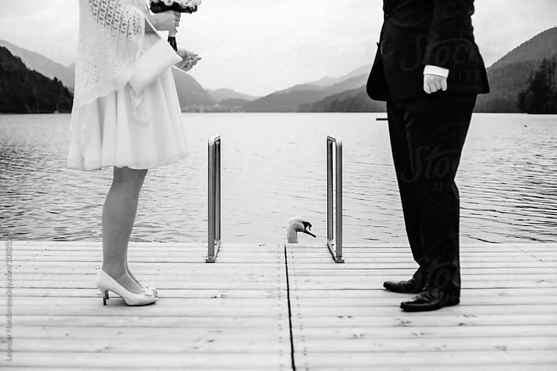 detail of a bridal couple with a swan in the lake - black and white by Leander Nardin for Stocksy United