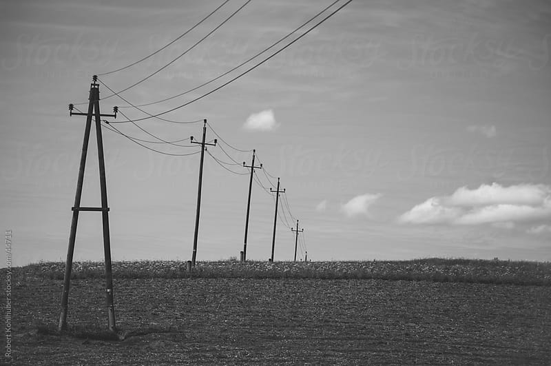 Power poles in nature landscape by Robert Kohlhuber for Stocksy United