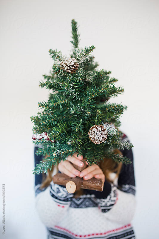 Young woman holding mini Christmas tree by Jovana Rikalo for Stocksy United
