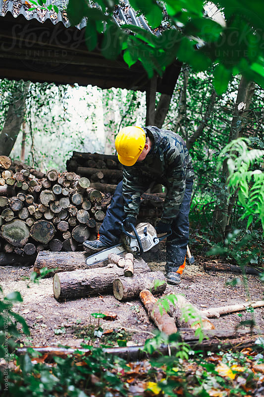 lumberjack or woodpecker chopping wood in a forest with an electric saw by Ivo de Bruijn for Stocksy United