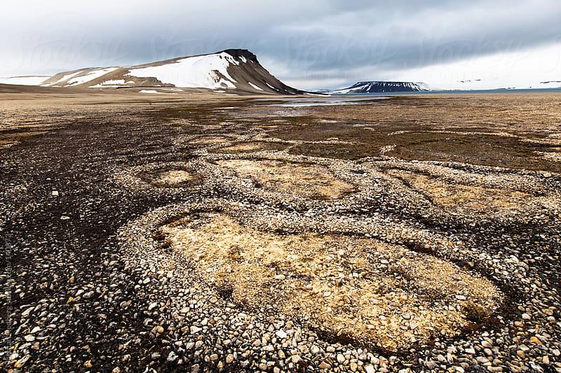 Pebble circles by Jonatan Hedberg for Stocksy United