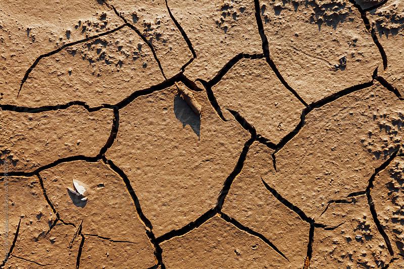 Drylands by Dimitrije Tanaskovic for Stocksy United