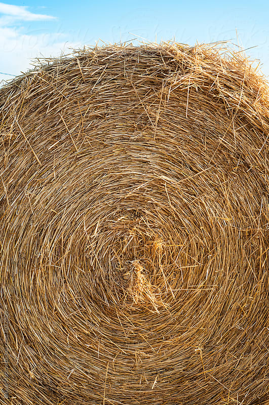 Close up of a straw bale on a field, Spain by Bisual Studio for Stocksy United